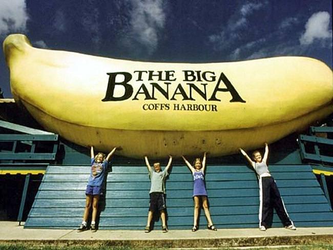 big-banana1-1